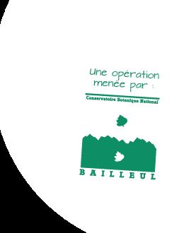 Une opération menée par le Conservatoire botanique national de Bailleul - CBNBL